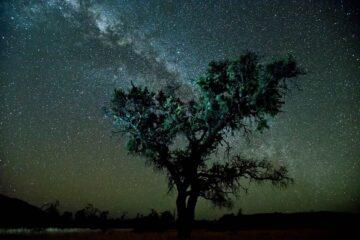 Greg Weight 'Celestial Moment'